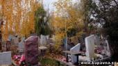 Старая Купавна - Уголовное дело о захоронении людей на сельхозземлях Старой Купавны возбудили в Ногинске