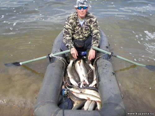 где ловить рыбу в купавне