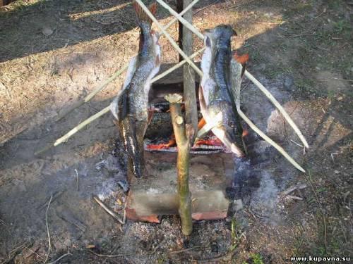 отчет рыбалки на старой купавне